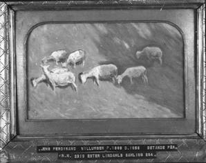 NM2319-1921.jpg