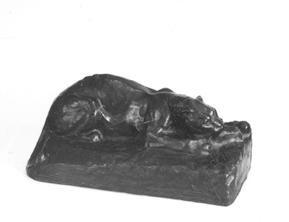NMsk1176-1921.jpg