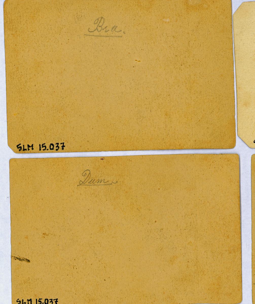 SLM15037C.jpg