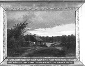 NM2313-1921.jpg