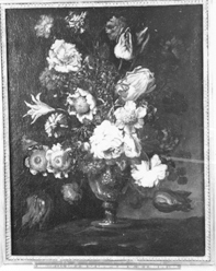 NM2325-1921.jpg