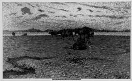 NM2287-1921.jpg