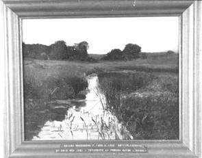 NM2312-1921.jpg