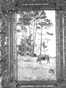 NM2291-1921.jpg