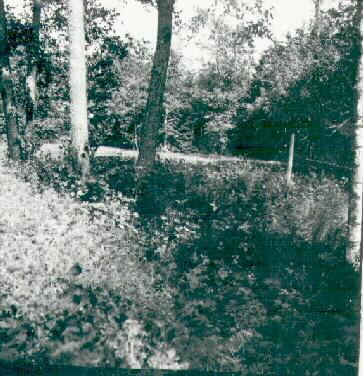 SLM_A29-356.JPG