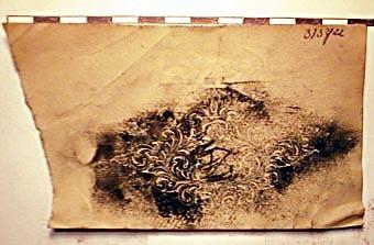 SLM8611-1455.jpg