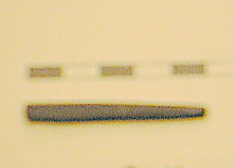 SLM8611-1578.jpg