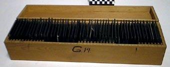 SLM31025.jpg