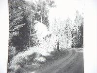 SLM_A5-84.JPG