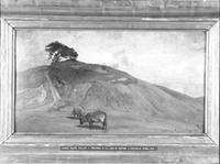 NM2315-1921.jpg
