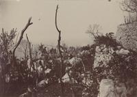 SLM_P09-1936.jpg