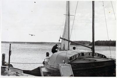 P2019-0388.jpg