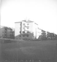SLM_249-2.jpg