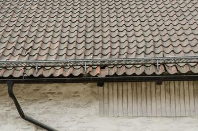 D2015-1009.jpg