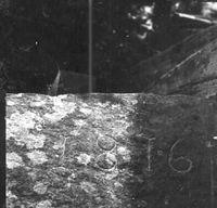 SLM_A27-489.JPG