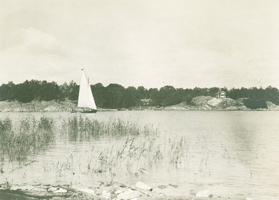 P2013-1941.jpg