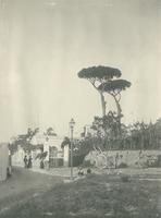 SLM_P09-1933.jpg