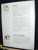 SLM33804-4.jpg