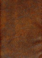 SLM34950-74.jpg