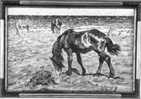 NM2285-1921.jpg