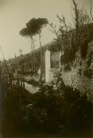 SLM_P09-1938.jpg