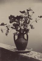 SLM_P09-1948.jpg