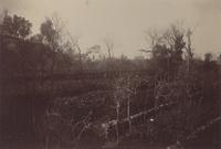 SLM_P09-1947.jpg